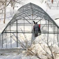 ハウスの除雪