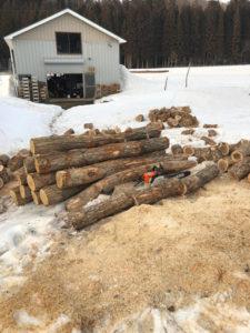 薪の玉切り