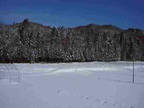 北窓からの冬景色