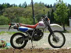 XLR250