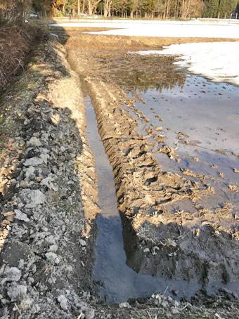 新植りんどう圃場排水掘り